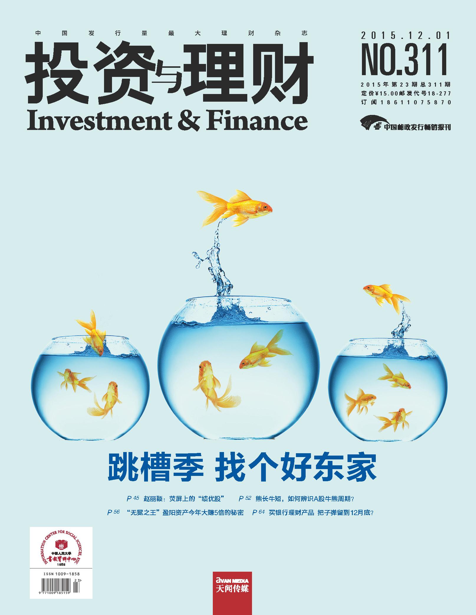 投资与理财2015年第13期