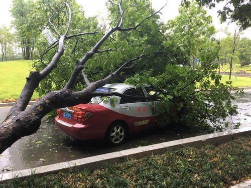 面对台风,如何保护好自己的爱车?