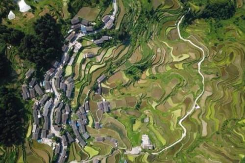 三年欲投1.5亿中国三星发布扶贫新战略