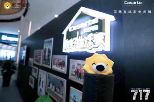 單日銷售5億的同時蘇寧海爾家電藝術展走遍全國14城