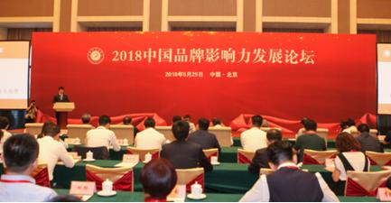 中邦融金受邀出席中国品牌影响力发展论坛并荣获两大奖项