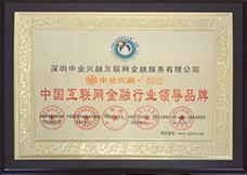 中国互联网金融行业领导品牌