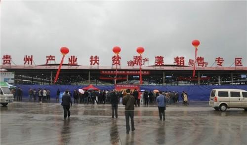稳健应对疫情冲击,中国地利2020上半年逆势盈利